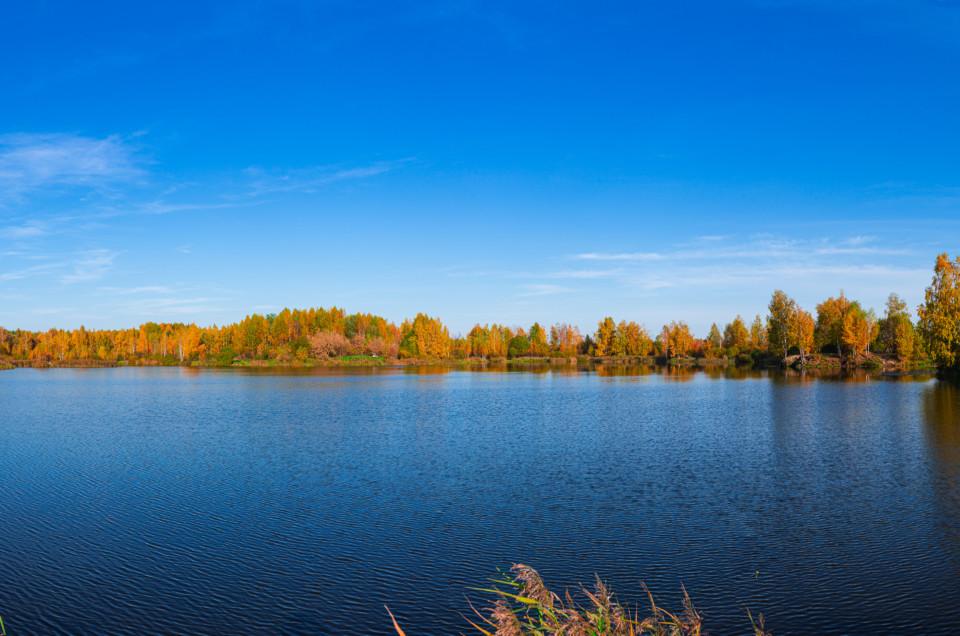 Осень на болотах Лосиного Острова.